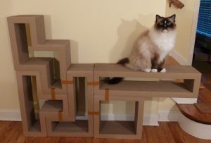 Katris Modular Cardboard Cat Scratcher Furniture Review by Floppycats