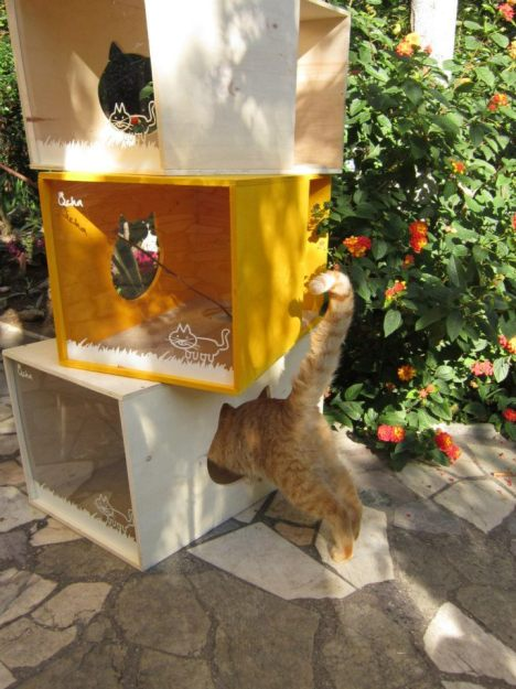 Qcha Modular Cat Tree Tower 5