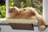 Comfort Window Perch by Feline Furniture