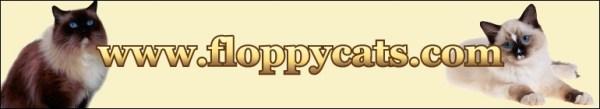 Floppycats.com's Logo Nov 2009 - Sept 2010
