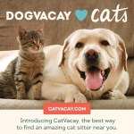 CatVacay: Find a Vetted and Insured Pet Sitters Online