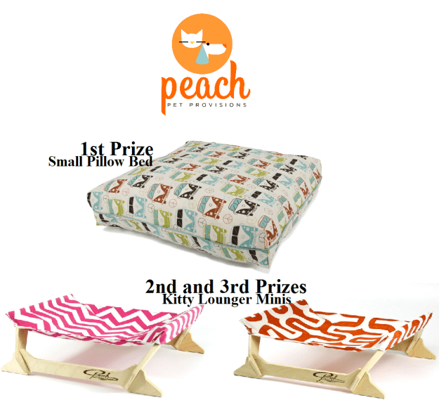 May 2015 Floppycats Giveaway Peach Pet Provisions Cat Pillow Bed and Hammocks