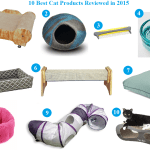 10 Favorite Cat Products Reviewed in 2015