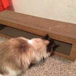 Katris Cardboard Cat Scratcher Covers Product Review