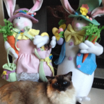 Happy Ragdoll Cat Caymus Easter Bunny 2016