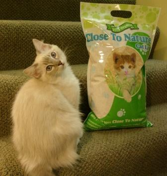 Close to Nature Now Cat Litter