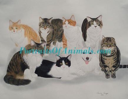 Cats by Cherie Vergos