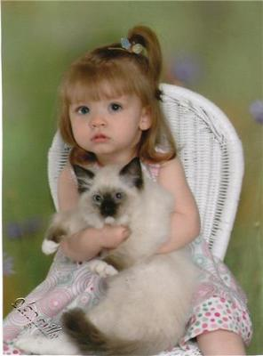 Our Granddaughter Isabella with a 10-week old Seal Point Mitted Kitten
