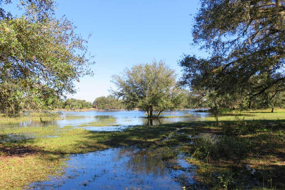 Muddy flooded florida is wet so check before you camp for Fish creek florida