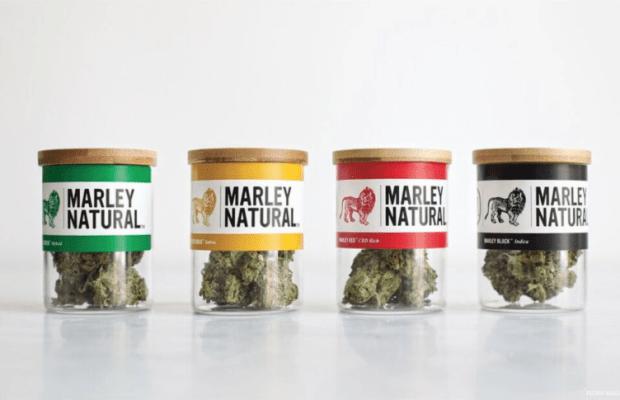 Marley Naturals.png 1