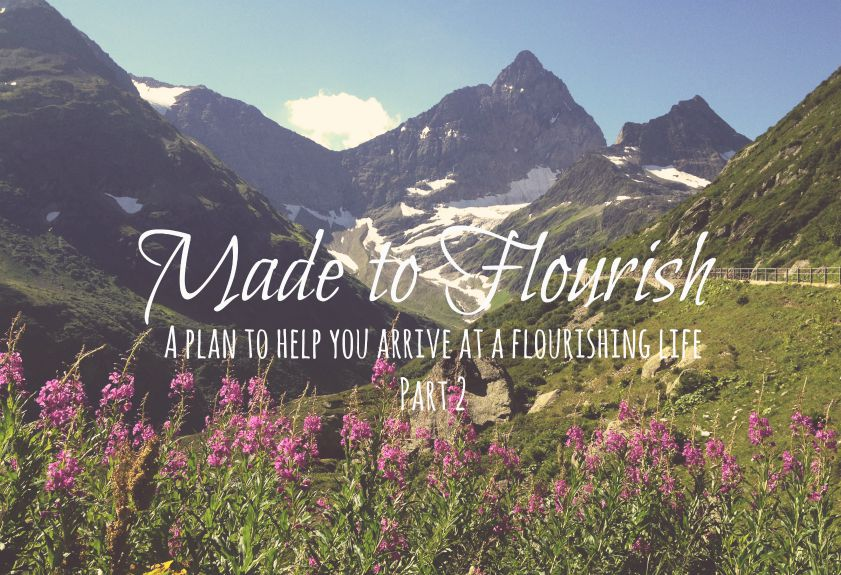 Made to Flourish: A Plan to Help You Arrive at a Flourishing Life {Part 2}
