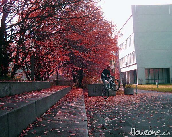 dave_autumn2_red