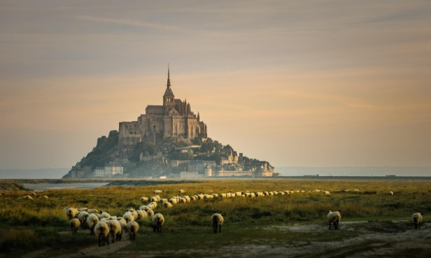 9093410-R3L8T8D-1000-Mont-Saint-Michel-in-Normandy-France