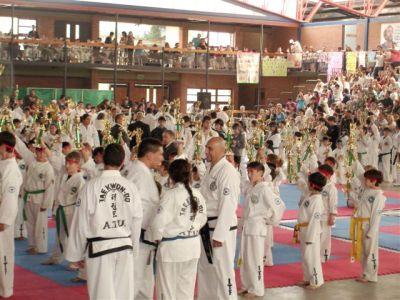 Exhibición Taekwondo Infantil