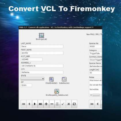Delphi XE6 Convert VCL To Firemonkey Android IOS
