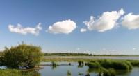 Lors de sa réunion du 10 mai 2017, la commission départementale des sites de Loire-Atlantique s'est prononcée contre la régularisation d'un platelage en bois implanté en toute illégalité au sein […]
