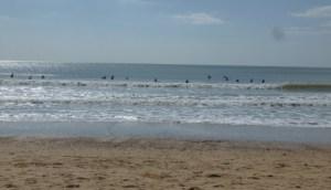 Longeville_surfeurs_2015-05_XMetay (2)