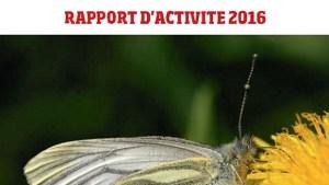 Rapport_activite_2016