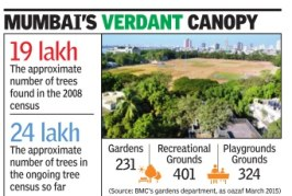 HC asks BMC to spell out plan to increase city's green cover
