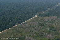 BR 163 Highway in the Amazon