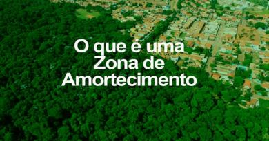 RTEmagicC_amazonia-foto.jpg