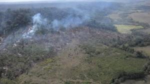 Área desmatada irregularmente (foto Ibama)