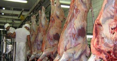 Frigorifico-carne