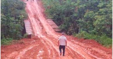 Rodovia-Transamazônica