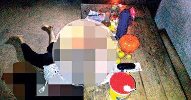 destaque-333380-corpo-de-idosa-morta-em-braganca---rota-braganca-5