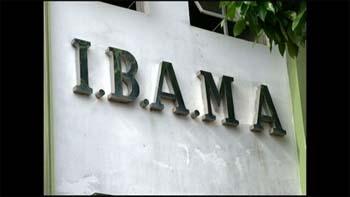 Servidora-do-Ibama-é-condenada-pela-Justiça-Federal