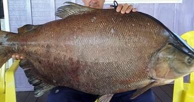 James Antônio exibe o maior peixe da vida dele (Foto: Arquivo pessoal/ James Antônio de Souza) James Antônio exibe o maior peixe da vida dele (Foto: Arquivo pessoal/ James Antônio de Souza)