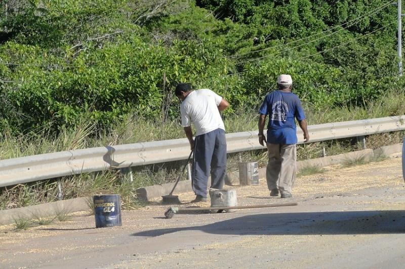 Moradores recolhendo milho