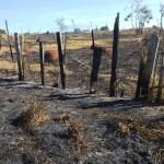 Incêndio em pastagem de propriedade rural queimou 60 hectares, 3 km de cerca e três bovinos morreram