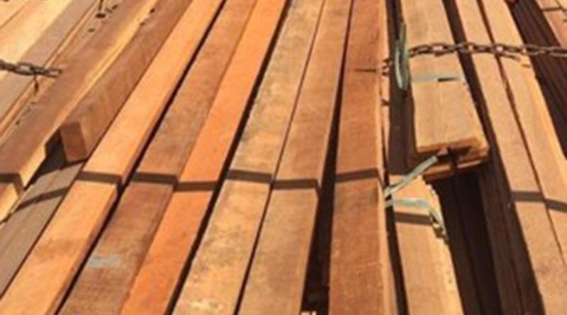 Produtos Florestais- Operação desfaz esquema de corrupção na Sefa