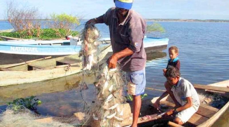 Iguatu;CE: Pescador recolhe rede com peixe, no açude Orós, na localidade de Barrocas; período de defeso suspende atividade até 30 de abril das espécies de piracema.