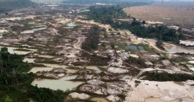 Ibama embarga garimpo em Altamira (PA) e aplica multa de R$ 50 milhões