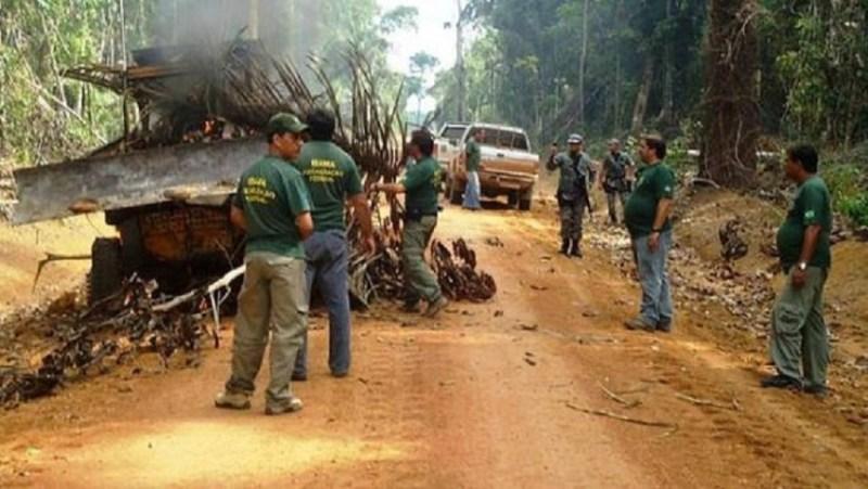 Agentes do Ibama preparam a fogueira para o trator (Divulgação Internet)