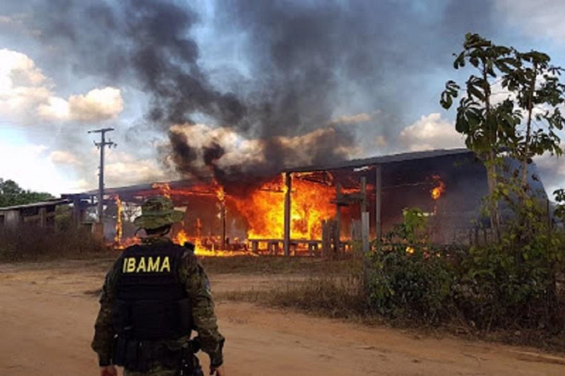 Serrraria destruida por falta de licença em Moraes Almeida (Foto Divulgação Ibama)