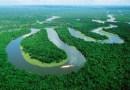 Alemanha pode seguir Noruega e cortar ajuda a Fundo Amazônia