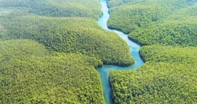 Amazônia-1024x683