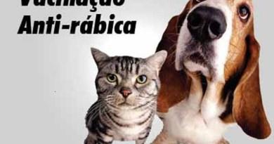 vacina_anti_rabica