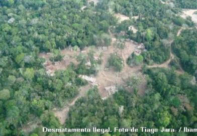 MPF recomenda anulação de licenças e planos de manejo florestal incidentes sobre áreas de proteção federais no AM