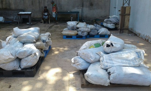 Produtos (pirarucudefumado) apreendidos pela fiscalização no frigorífico irregular serão descartados (Foto: Dominique Cavaleiro/G1)