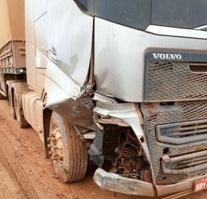 Motorista do caminhão foi preso cerca de 85 quilômetros após o local do acidente (Foto: Policia)
