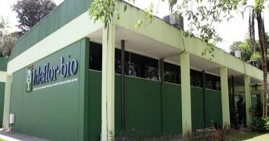 Ideflor-bio abre Processo Seletivo para Belém e Altamira