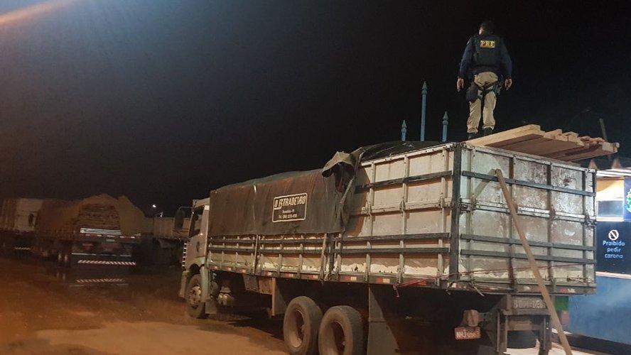 Madeiras com guia florestal falsas de Novo Progresso e Santarém são presas pela PRF no Mato Grosso