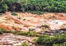 Pará é o maior desmatador da Amazônia, diz pesquisa