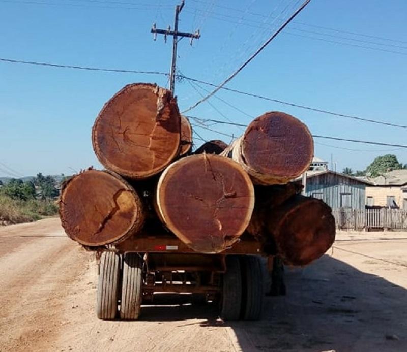 madeira caminhao np