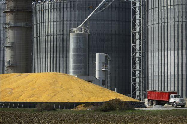 Direito de imagem Reuters Procurador do Trabalho diz que faltam auditores para fiscalizar armazéns agrícolas em Mato Grosso Normas de segurança em silos