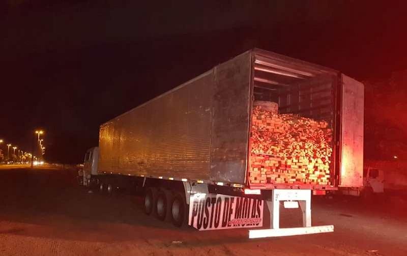 PRF apreendeu caminhão carregado com madeira ilegal na rodovia BR-010, em Dom Eliseu, no sudeste do Pará — Foto: Polícia Rodoviária Federal